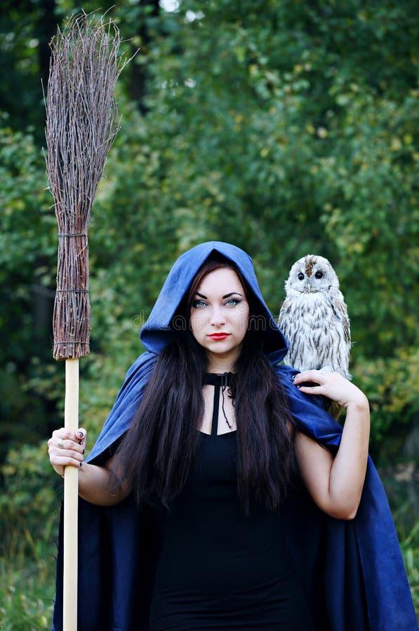 Μάγισσα στην κουκούλα με μια κουκουβάγια στο δάσος στοκ φωτογραφία