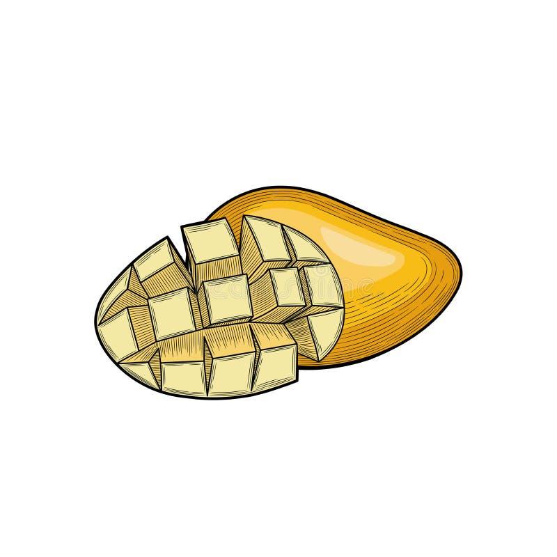 Μάγκο Μισό μάγκο Συγκομιδή φρούτων εξωτικός καρπός στοκ φωτογραφία