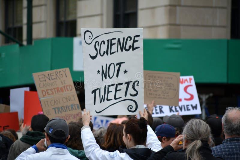 Μάρτιος για την επιστήμη στοκ εικόνες με δικαίωμα ελεύθερης χρήσης