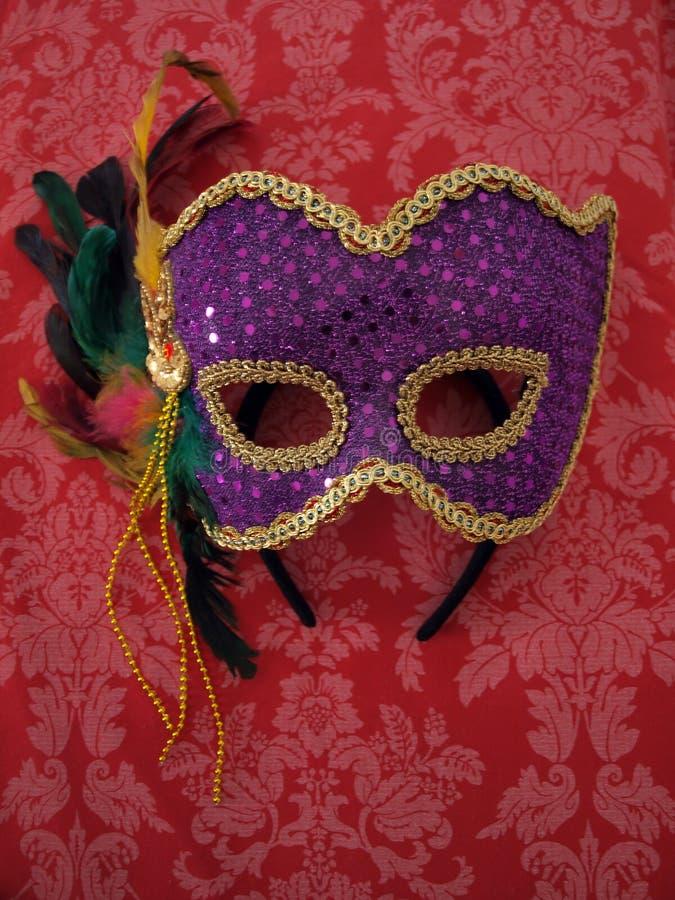 μάσκα υφάσματος 8 καρναβάλ στοκ φωτογραφία με δικαίωμα ελεύθερης χρήσης