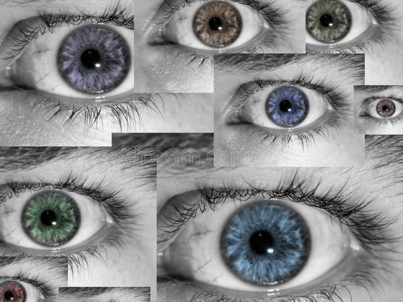 μάτια κολάζ στοκ φωτογραφία με δικαίωμα ελεύθερης χρήσης