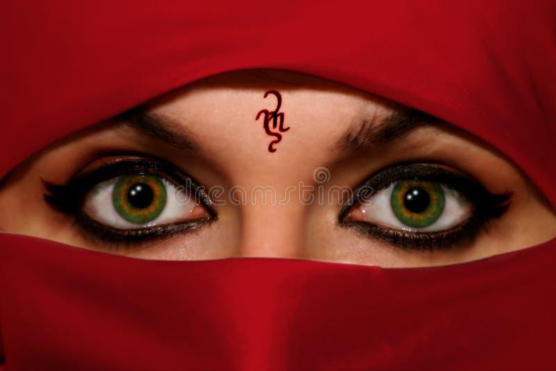 μάτια πράσινα στοκ φωτογραφίες με δικαίωμα ελεύθερης χρήσης