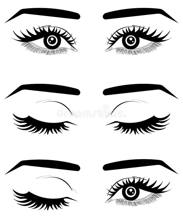 Μάτια της φρέσκιας καφετιάς γυναίκας Ιστού Ιδέα για τις επαγγελματικές κάρτες Τυπωμένη ύλη για την μπλούζα Διάνυσμα τυπογραφίας απεικόνιση αποθεμάτων