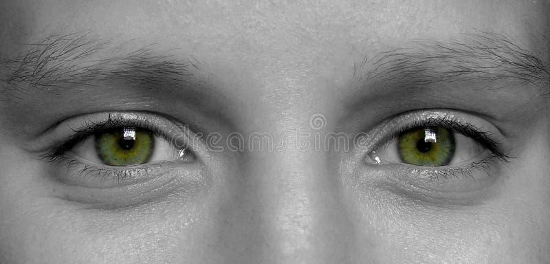 Download μάτια στοκ εικόνα. εικόνα από closeup, λεπτομέρειες, γυναίκα - 123721