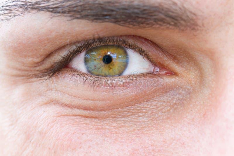 Μάτι ενός ατόμου στοκ εικόνα