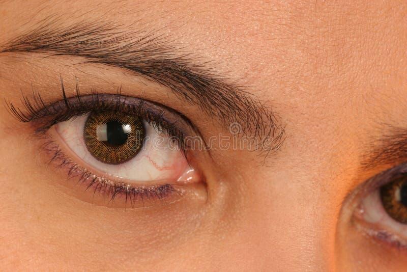 μάτι επαφών στοκ εικόνα με δικαίωμα ελεύθερης χρήσης