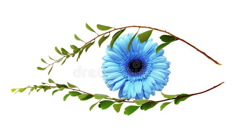 Μάτι της φύσης από τους κλαδίσκους με τα μικρά πράσινα φύλλα και το μπλε gerber στοκ φωτογραφίες