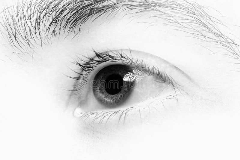 μάτι 4 κινηματογραφήσεων σε πρώτο πλάνο Στοκ Φωτογραφία