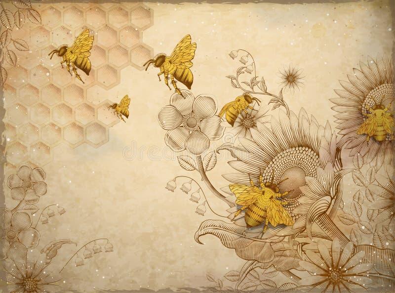 Μέλισσες και wildflowers μελιού διανυσματική απεικόνιση