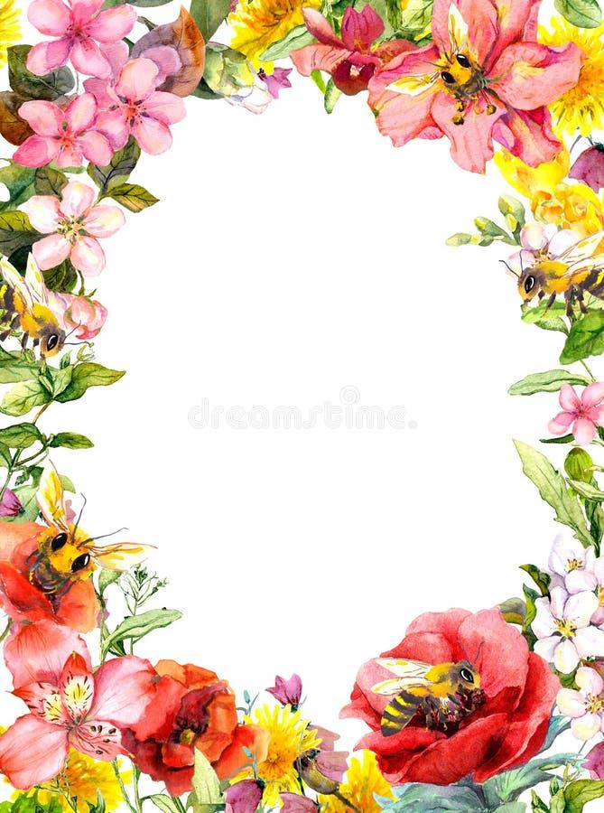 Μέλισσες μελιού, θερινά λουλούδια, άγριες χλόες, χορτάρια τομέων Floral κάρτα, πλαίσιο watercolor απεικόνιση αποθεμάτων