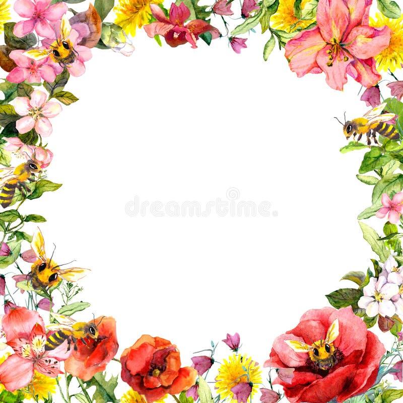 Μέλισσες μελιού στα άγρια λουλούδια, χορτάρια τομέων Floral κάρτα, πλαίσιο watercolor ελεύθερη απεικόνιση δικαιώματος