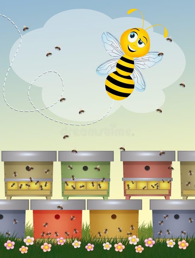 Μέλισσες στα κύτταρα ελεύθερη απεικόνιση δικαιώματος