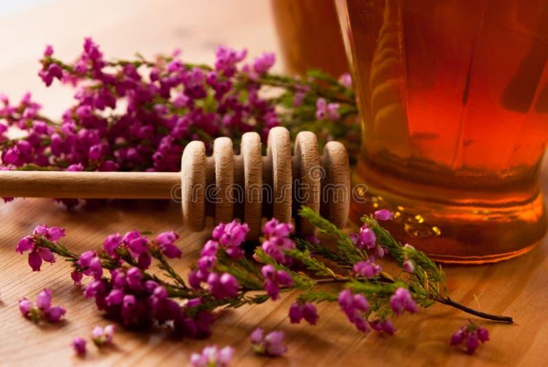 μέλι ερείκης στοκ φωτογραφίες με δικαίωμα ελεύθερης χρήσης