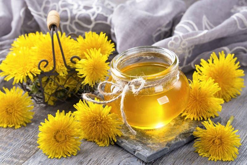 Μέλι πικραλίδων στοκ εικόνα με δικαίωμα ελεύθερης χρήσης