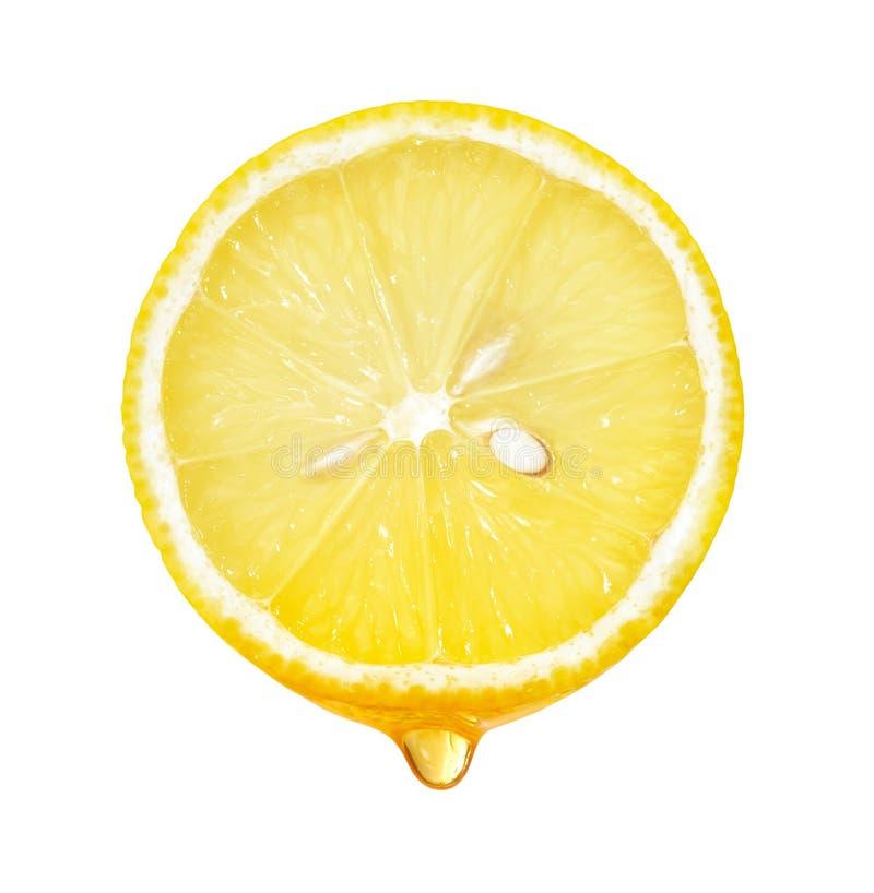 Μέλι που στάζει από τη φέτα λεμονιών που απομονώνεται στοκ εικόνα
