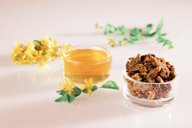 Μέλι, πρόπολη και νωπά άνθη του Αγίου Ιωάννη`Υ στοκ εικόνα με δικαίωμα ελεύθερης χρήσης