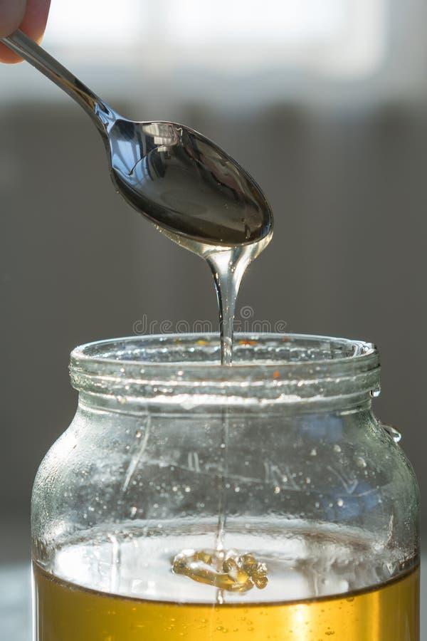 Μέλι σεσουλών με ένα κουτάλι από ένα βάζο αγωγοί μελιού από το κουτάλι σε σε αργή κίνηση στοκ εικόνες με δικαίωμα ελεύθερης χρήσης