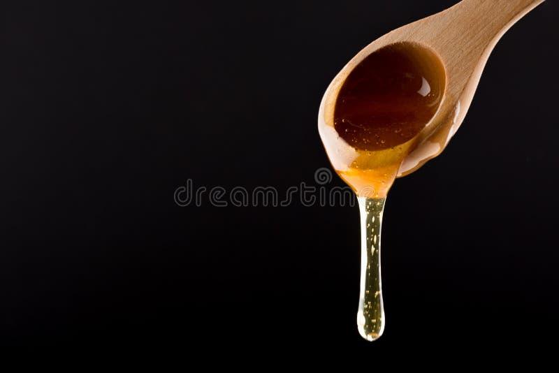Μέλι στο ξύλινο στάλαγμα κουταλιών που απομονώνεται στο μαύρο υπόβαθρο στοκ φωτογραφία με δικαίωμα ελεύθερης χρήσης