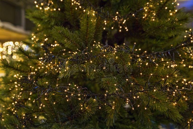 Μέρη και μέρη των φω'των Χριστουγέννων στοκ φωτογραφία με δικαίωμα ελεύθερης χρήσης