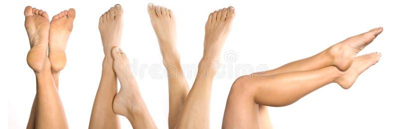 μέρη ποδιών στοκ φωτογραφία με δικαίωμα ελεύθερης χρήσης