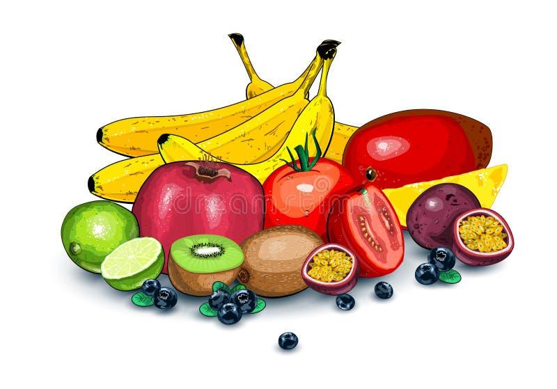 Μέρη των ώριμων φρούτων από κοινού απεικόνιση αποθεμάτων