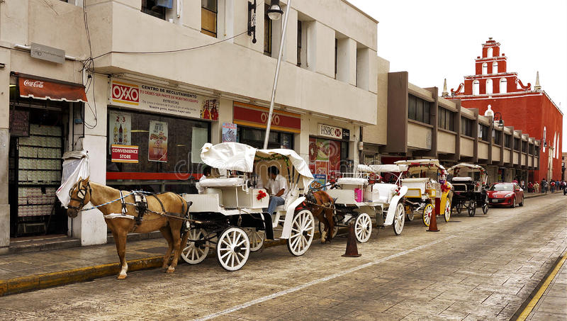 Μέριντα, Yucatan Μεξικό, στις 15 Ιανουαρίου 2015: Οι μεταφορές αλόγων περιμένουν τους επιβάτες μπροστά από τους μαγαζί λιανικής π στοκ εικόνες με δικαίωμα ελεύθερης χρήσης