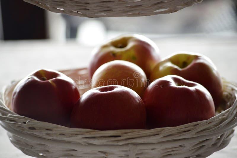 μέρος ολόκληρων των μήλων σε ένα κύπελλο στοκ φωτογραφία