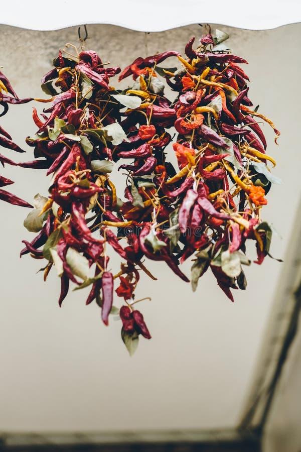 Μέρος της ένωσης του ξηρού τσίλι ως υπόβαθρο τροφίμων Κόκκινο ξηρό υπόβαθρο πιπεριών τσίλι Καυτή κόκκινη ξήρανση πιπεριών τσίλι στοκ εικόνες