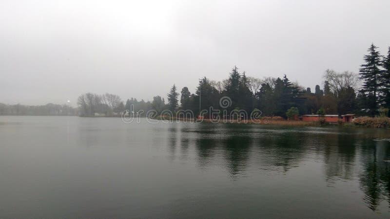 Μέσα στη λίμνη στοκ φωτογραφίες
