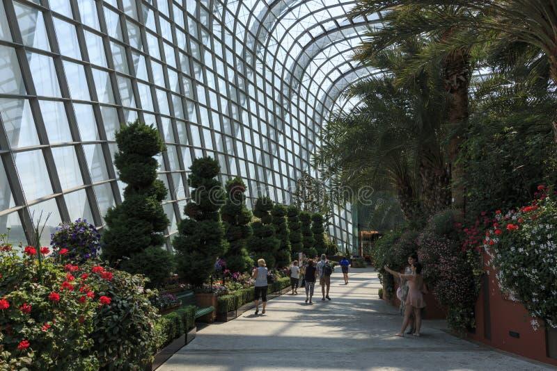 Μέσα στο θόλο λουλουδιών στους κήπους από τον κόλπο στη Σιγκαπούρη στοκ εικόνες με δικαίωμα ελεύθερης χρήσης