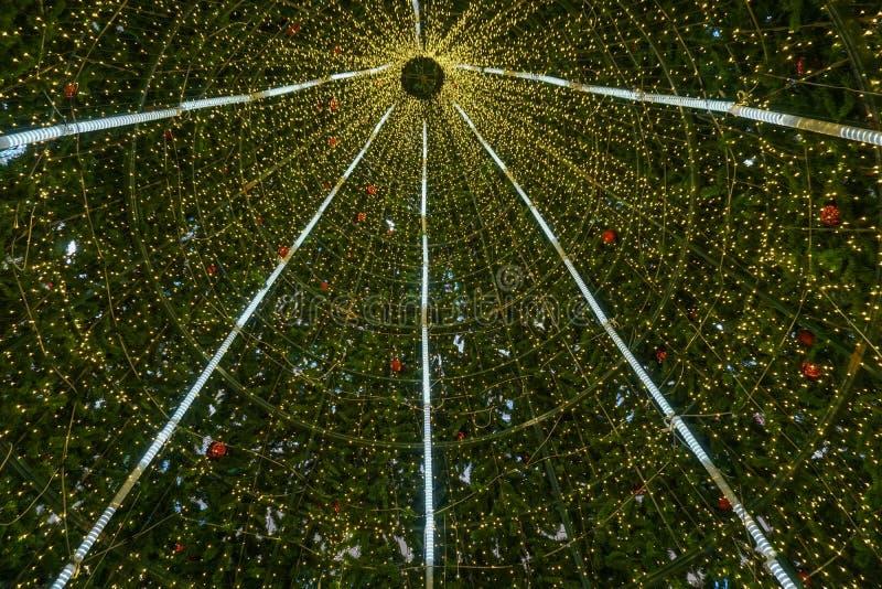Μέσα στο μεγάλο χριστουγεννιάτικο δέντρο στοκ εικόνες με δικαίωμα ελεύθερης χρήσης
