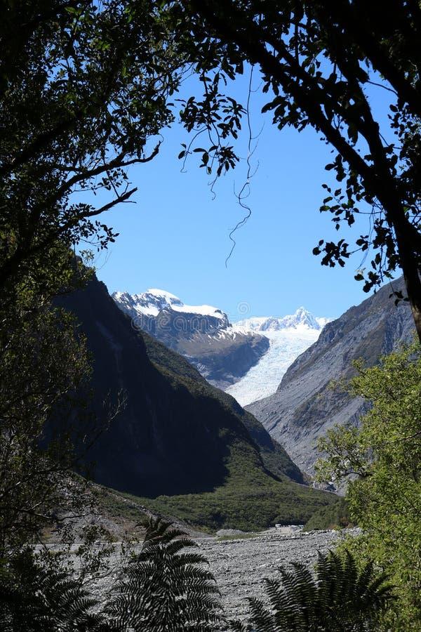 Μέσω του παγετώνα αλεπούδων δέντρων, Te Moeka ο Tuawe, NZ στοκ εικόνα με δικαίωμα ελεύθερης χρήσης