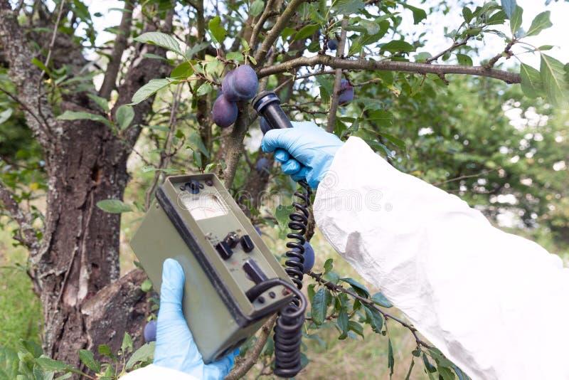 Μέτρηση των επιπέδων ακτινοβολίας των φρούτων στοκ φωτογραφίες με δικαίωμα ελεύθερης χρήσης