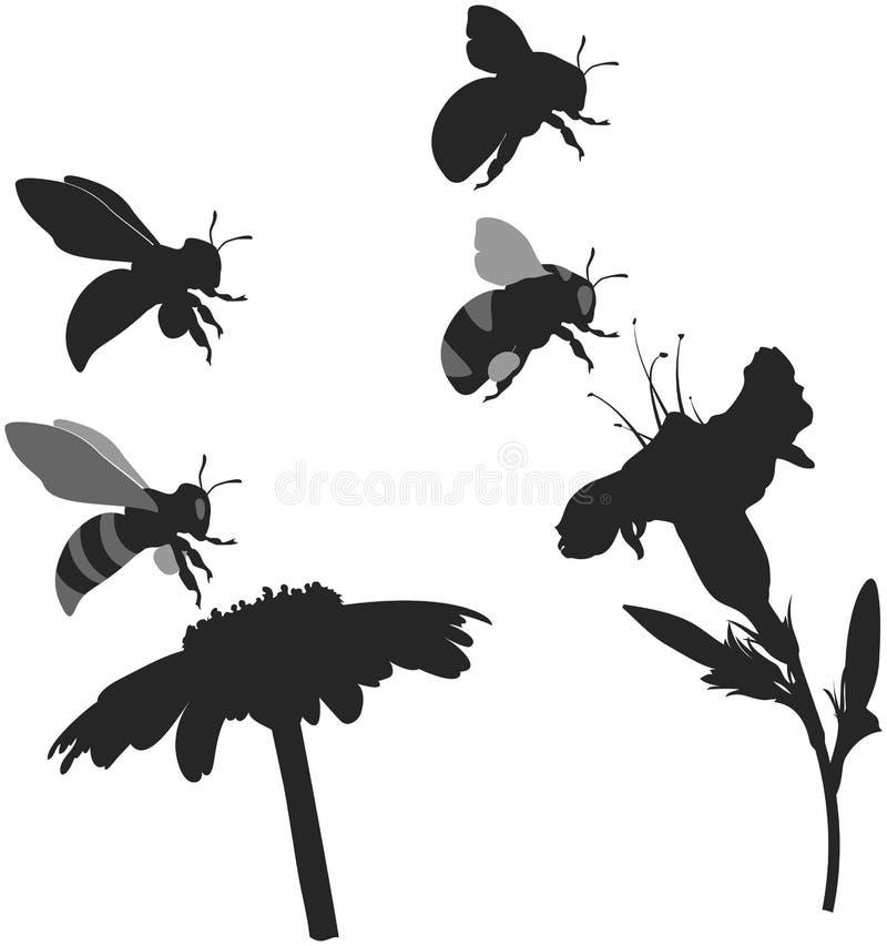 Μέλισσα και bumblebee σκιαγραφιών διανυσματική απεικόνιση