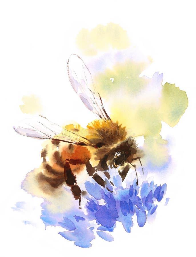 Μέλισσα μελιού μπλε απεικόνισης Watercolor λουλουδιών που σύρεται σε ετοιμότητα διανυσματική απεικόνιση