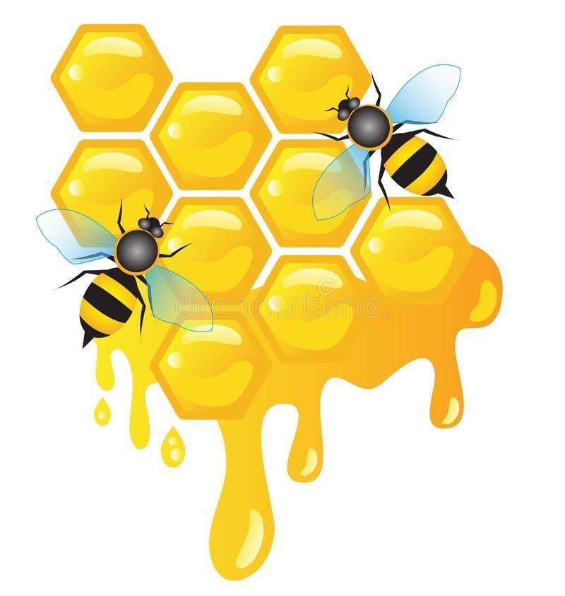 Μέλισσες εργαζομένων στα κύτταρα μελιού με το στάλαγμα μελιού διανυσματική απεικόνιση