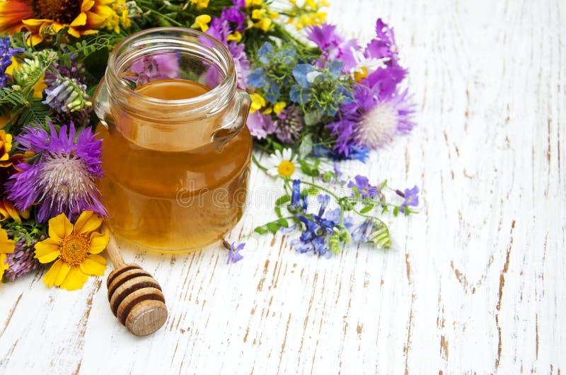 Μέλι και άγρια λουλούδια στοκ φωτογραφίες