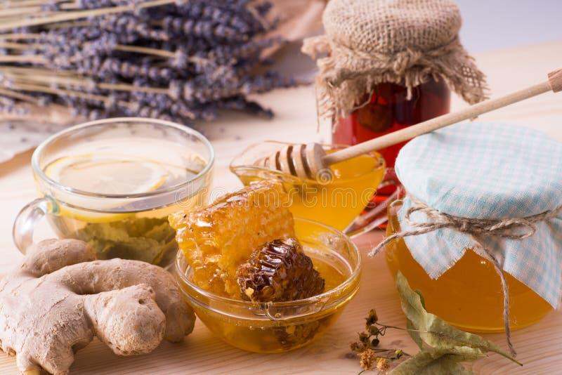 Μέλι, πιπερόριζα, lavender, τσάι, hoheycomb, λεμόνι στοκ εικόνες με δικαίωμα ελεύθερης χρήσης