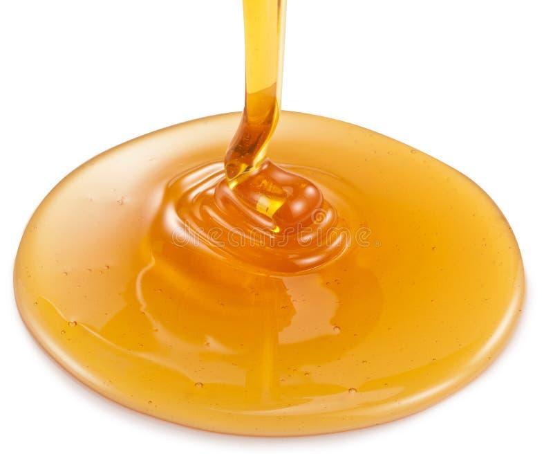 Μέλι που ρέει στο άσπρο υπόβαθρο στοκ εικόνα