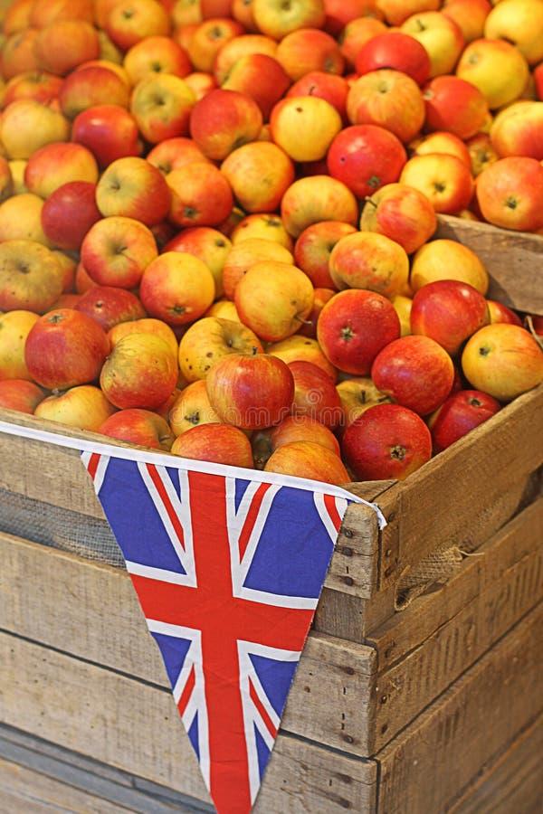 μήλα Βρετανοί στοκ φωτογραφίες με δικαίωμα ελεύθερης χρήσης