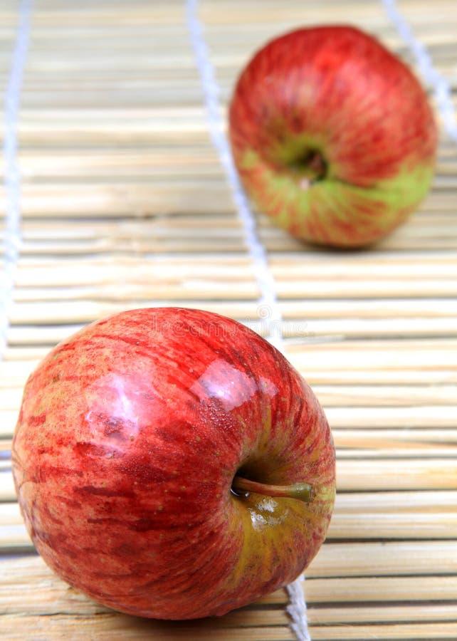 μήλα Κασμίρ στοκ φωτογραφίες με δικαίωμα ελεύθερης χρήσης