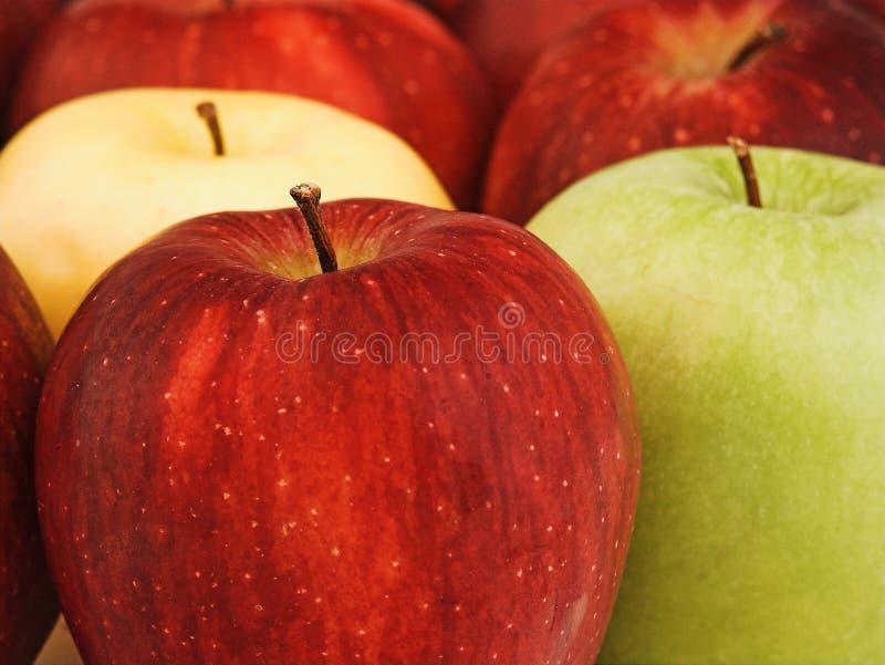 μήλα μικτά στοκ εικόνα