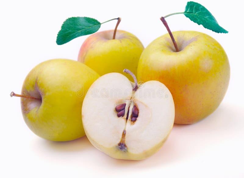 Download μήλα πράσινα στοκ εικόνες. εικόνα από φρεσκάδα, ώριμος - 13180350