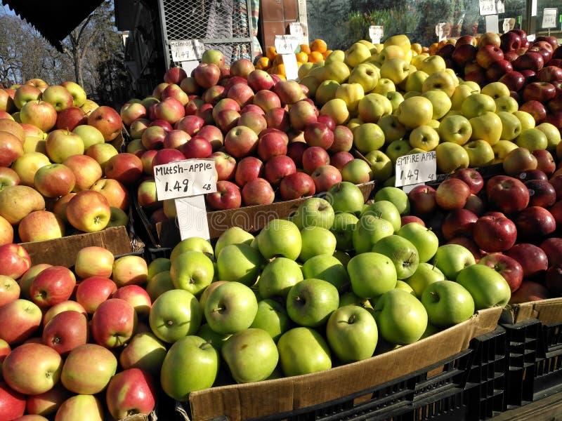 Μήλα πτώσης στοκ εικόνες