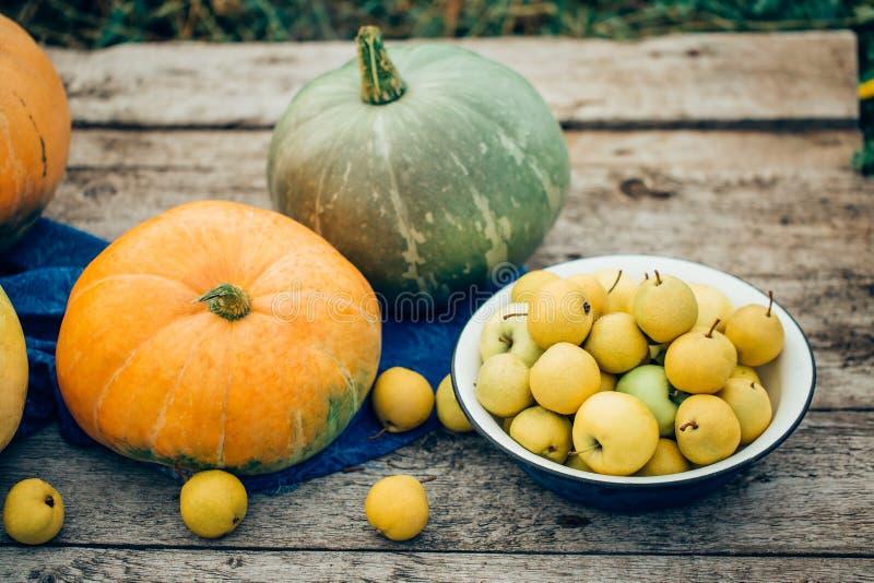 Μήλα συγκομιδών φθινοπώρου, αχλάδια στις πορτοκαλιών και πράσινων κολοκύθες κύπελλων, στοκ εικόνα με δικαίωμα ελεύθερης χρήσης