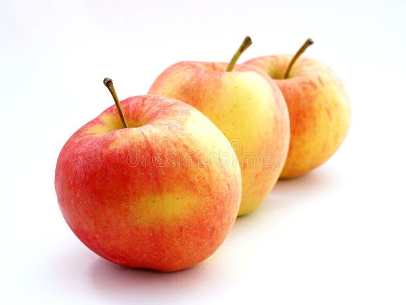 Download μήλα στοκ εικόνα. εικόνα από μίσχοι, έρημος, φρέσκος, καρπός - 1542889