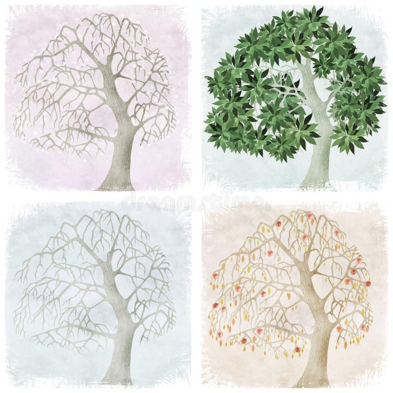 μήλο δέντρο τεσσάρων εποχώ& διανυσματική απεικόνιση