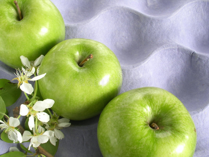 Download μήλο στοκ εικόνα. εικόνα από ζωηρόχρωμος, πράσινος, ομάδα - 120389