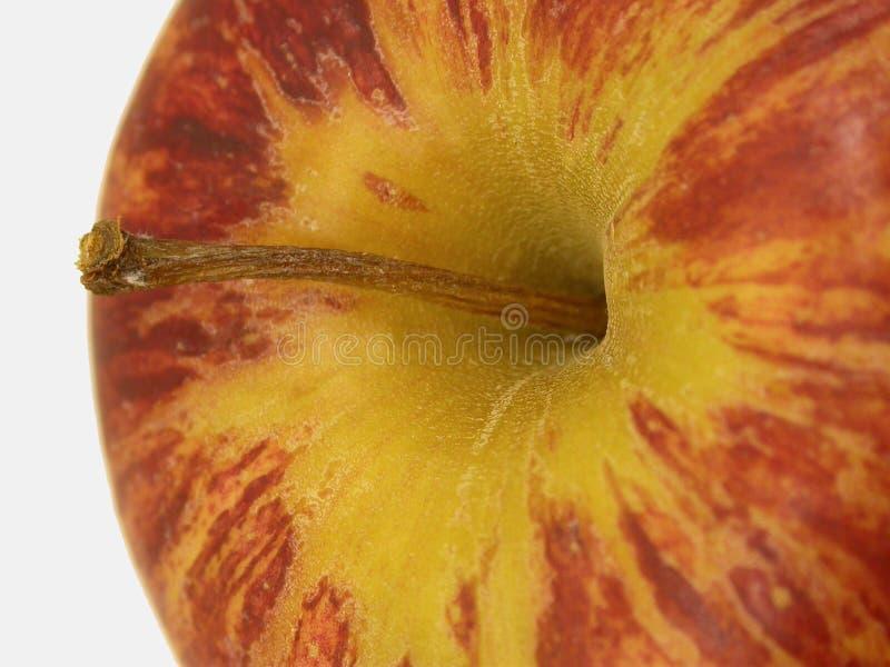 Download μήλο στοκ εικόνα. εικόνα από καρπός, κόκκινος, φύση, μίσχος - 56263