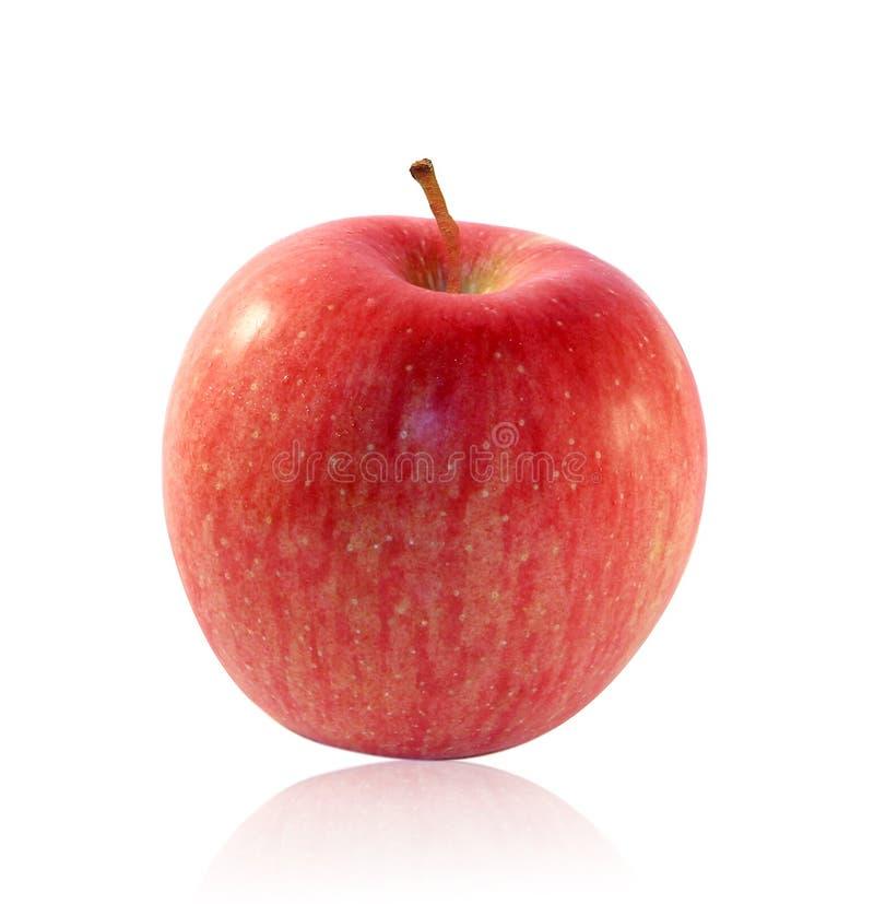 Μήλο Fuji στοκ φωτογραφία με δικαίωμα ελεύθερης χρήσης